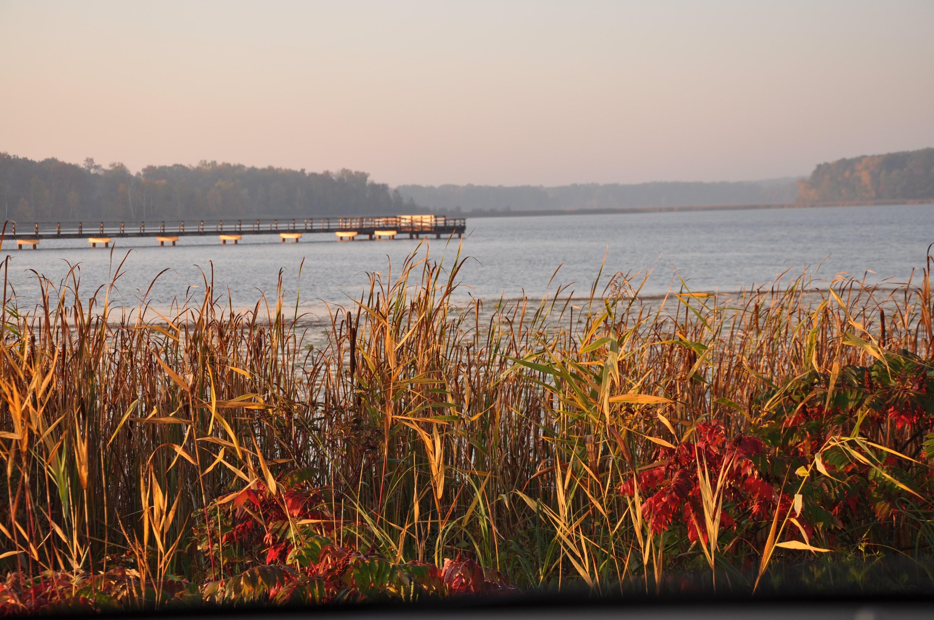 Dower Lake Pier
